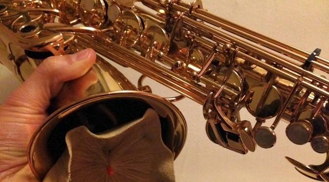Hur man rengör och tar hand om sin saxofon